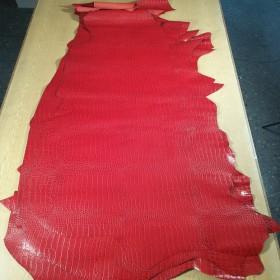 RED EMBOSSED CROCODILE 2555